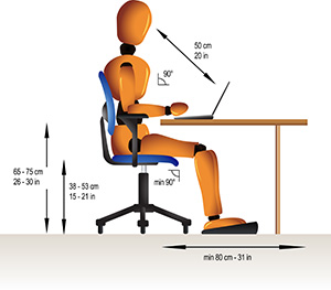 anatomy of basic desk ergonomics